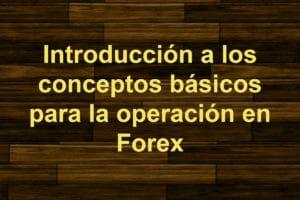 conceptos basicos para operar forex